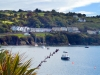 Glandore, West Cork