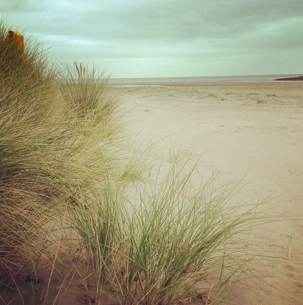 Inchydoney_Dunes